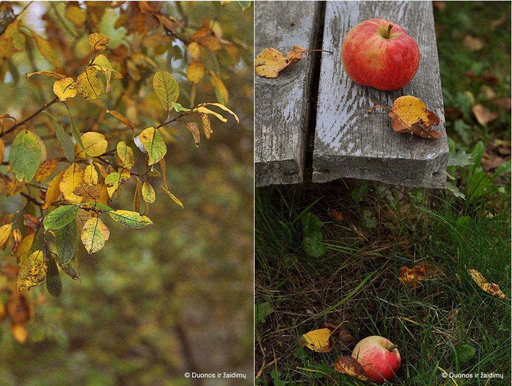 Italiskas Bolzano obuoliu pyragas